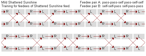 Mild Shattered Sunshine causal diagram